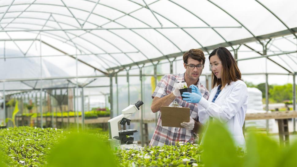 ¿Por qué en el Perú hay escasez de expertos en agro?