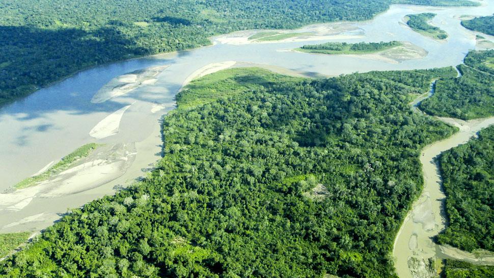 Amazonía: ¿Cuáles son las acciones responsables para cuidarla?