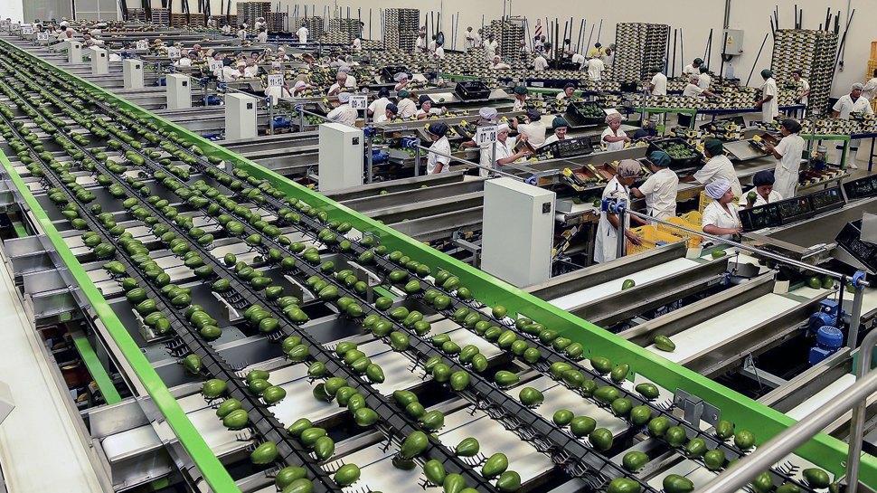 Retos para potenciar productos peruanos con valor agregado